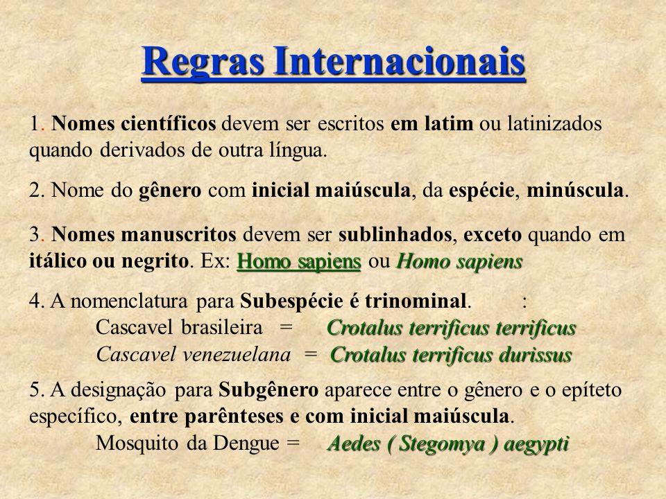 Regras Internacionais 1. Nomes científicos devem ser escritos em latim ou latinizados quando derivados de outra língua. 2. Nome do gênero com inicial