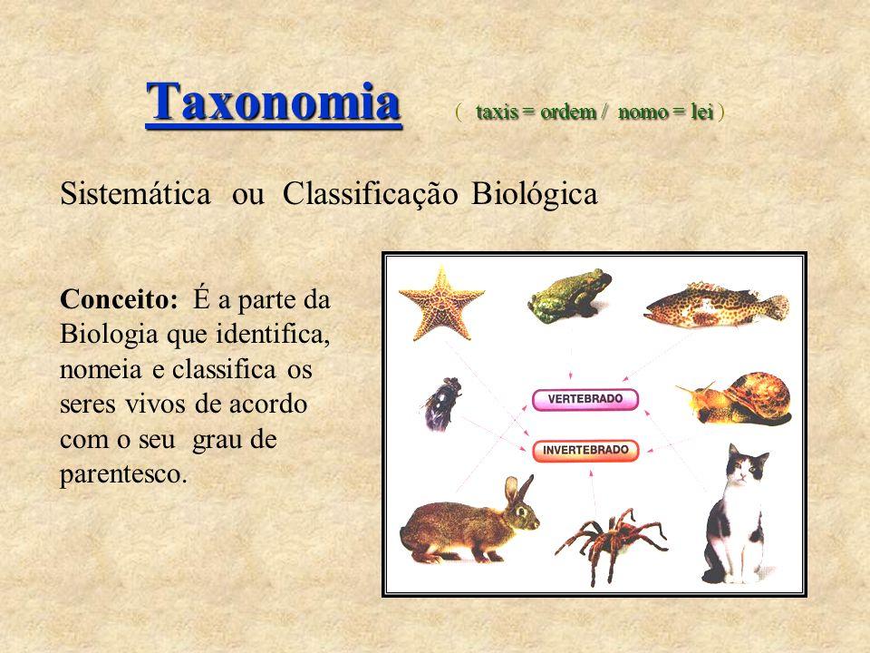 Taxonomia taxis = ordem / nomo = lei Taxonomia ( taxis = ordem / nomo = lei ) Sistemática ou Classificação Biológica Conceito: É a parte da Biologia q