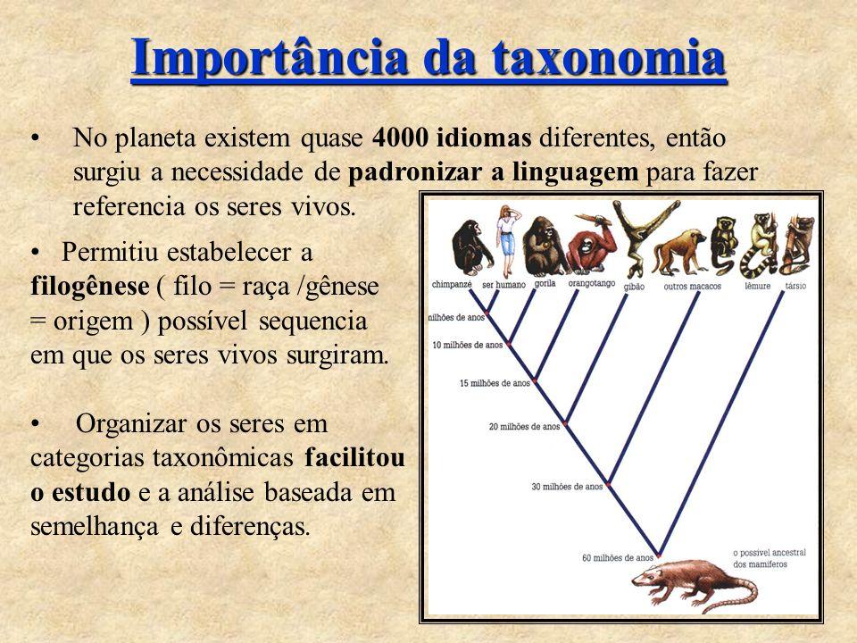 Importância da taxonomia No planeta existem quase 4000 idiomas diferentes, então surgiu a necessidade de padronizar a linguagem para fazer referencia