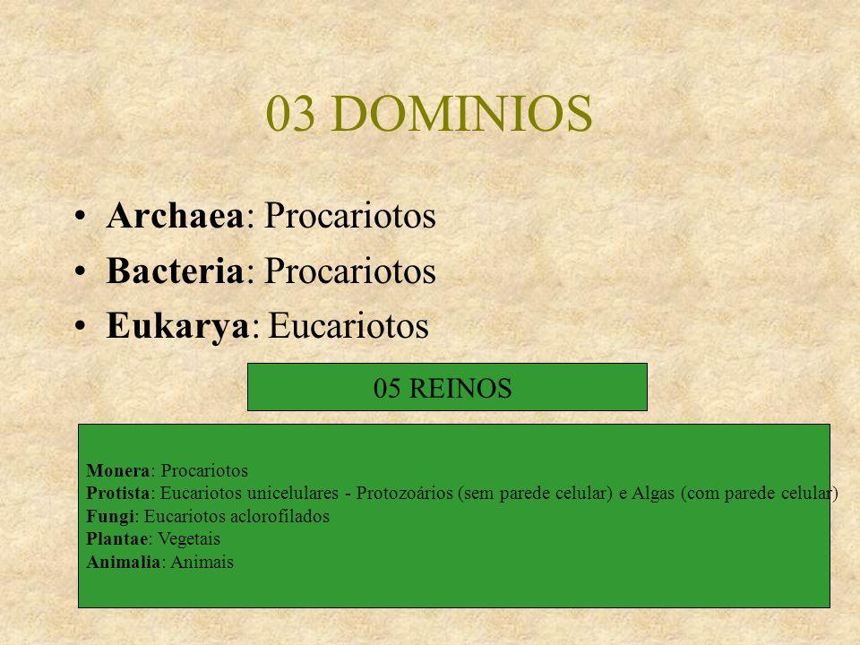 03 DOMINIOS Archaea: Procariotos Bacteria: Procariotos Eukarya: Eucariotos 05 REINOS Monera: Procariotos Protista: Eucariotos unicelulares - Protozoár