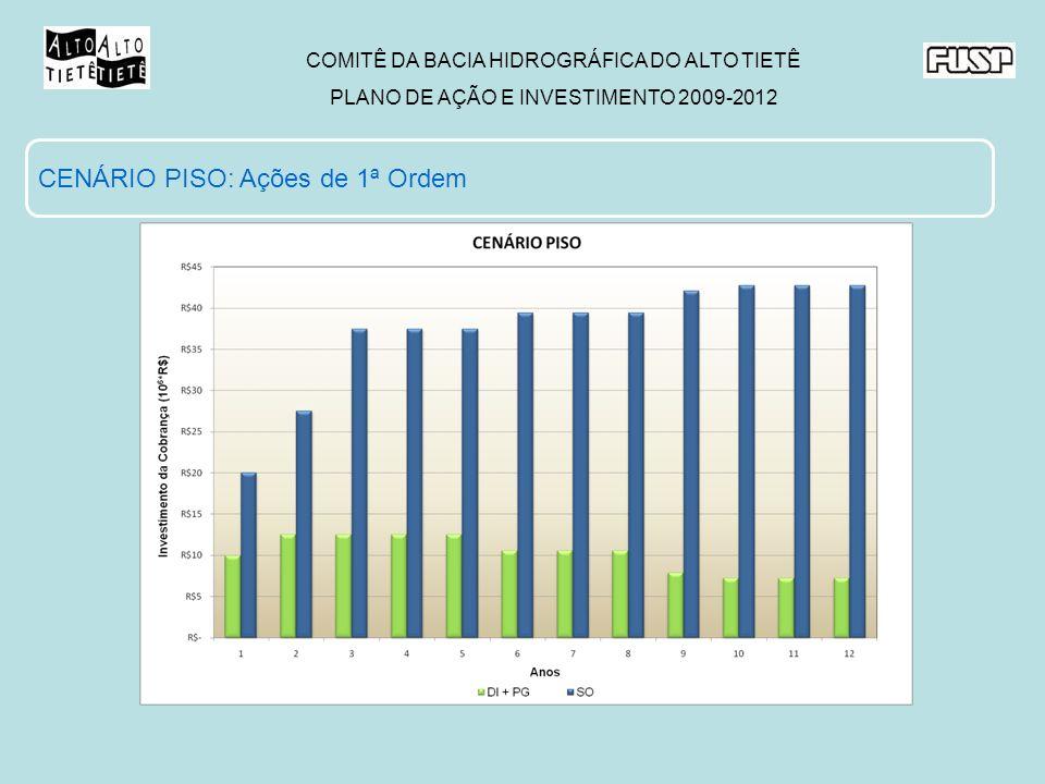 COMITÊ DA BACIA HIDROGRÁFICA DO ALTO TIETÊ PLANO DE AÇÃO E INVESTIMENTO 2009-2012 CENÁRIO PISO: Ações de 1ª Ordem