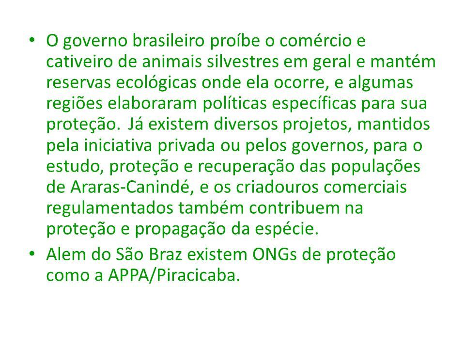O governo brasileiro proíbe o comércio e cativeiro de animais silvestres em geral e mantém reservas ecológicas onde ela ocorre, e algumas regiões elab