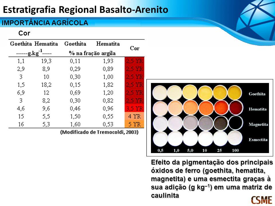 Efeito da pigmentação dos principais óxidos de ferro (goethita, hematita, magnetita) e uma esmectita graças à sua adição (g kg –1 ) em uma matriz de c