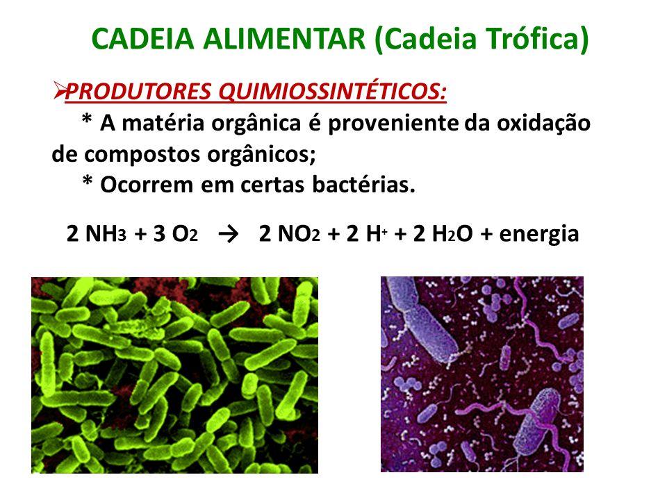 PRODUTORES QUIMIOSSINTÉTICOS: * A matéria orgânica é proveniente da oxidação de compostos orgânicos; * Ocorrem em certas bactérias. CADEIA ALIMENTAR (