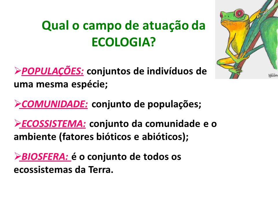 Qual o campo de atuação da ECOLOGIA? POPULAÇÕES: conjuntos de indivíduos de uma mesma espécie; COMUNIDADE: conjunto de populações; ECOSSISTEMA: conjun