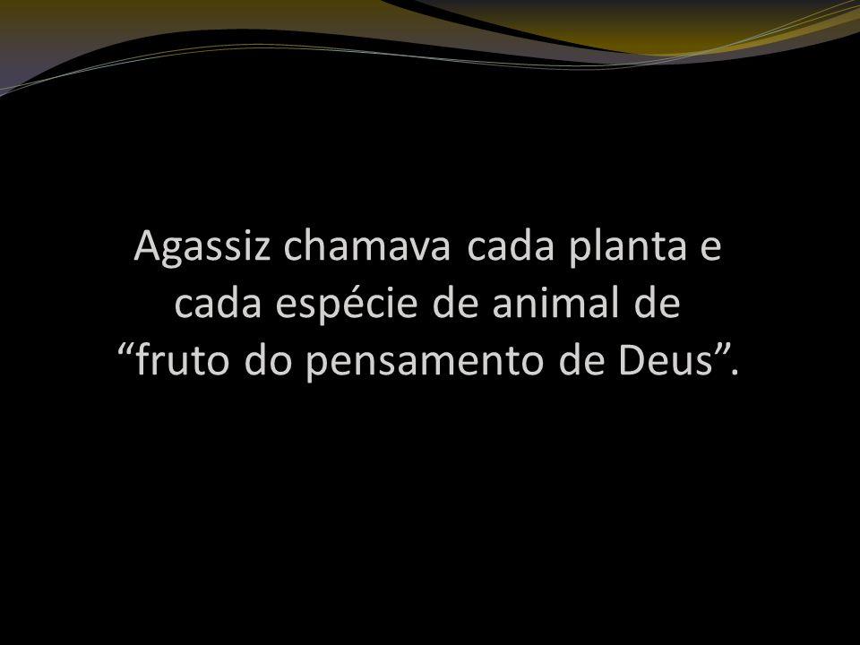 Agassiz chamava cada planta e cada espécie de animal de fruto do pensamento de Deus.