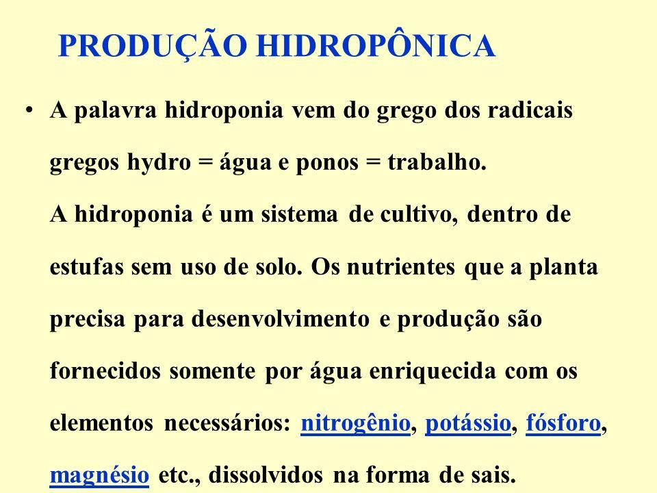 PRODUÇÃO HIDROPÔNICA A palavra hidroponia vem do grego dos radicais gregos hydro = água e ponos = trabalho.