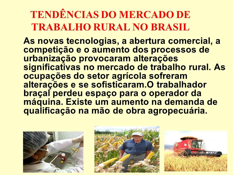 TENDÊNCIAS DO MERCADO DE TRABALHO RURAL NO BRASIL As novas tecnologias, a abertura comercial, a competição e o aumento dos processos de urbanização provocaram alterações significativas no mercado de trabalho rural.