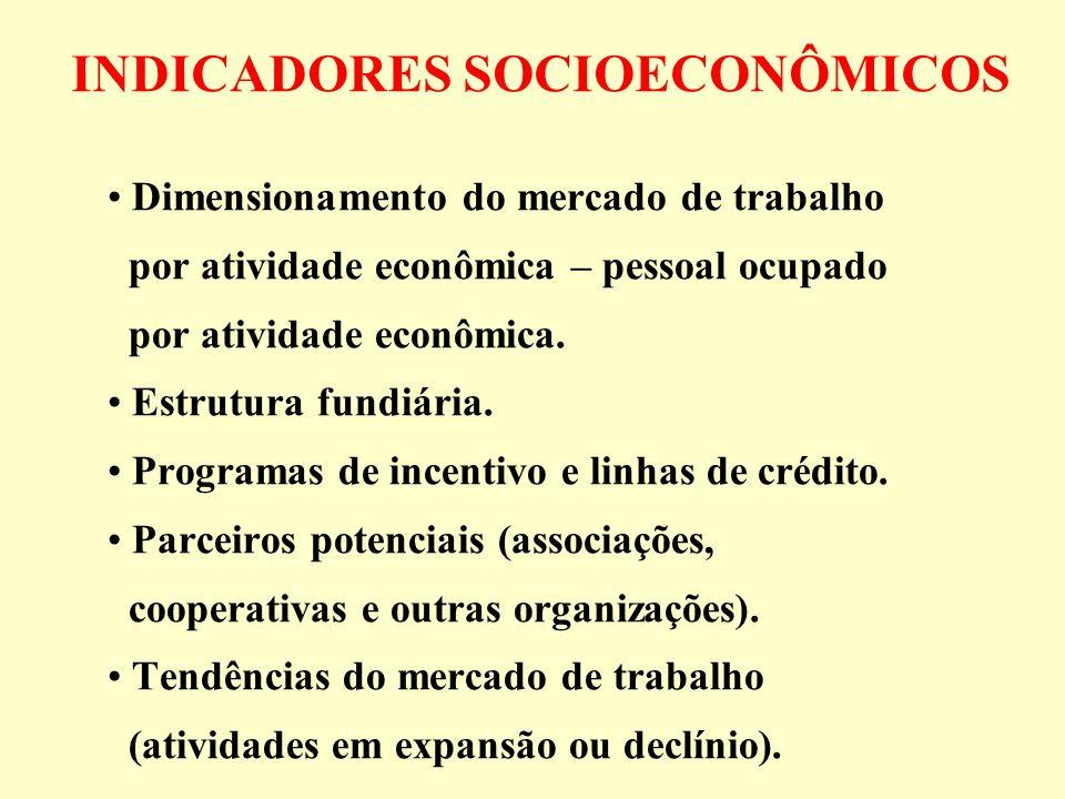 INDICADORES SOCIOECONÔMICOS Dimensionamento do mercado de trabalho por atividade econômica – pessoal ocupado por atividade econômica. Estrutura fundiá