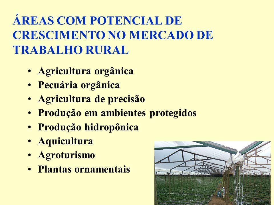 ÁREAS COM POTENCIAL DE CRESCIMENTO NO MERCADO DE TRABALHO RURAL Agricultura orgânica Pecuária orgânica Agricultura de precisão Produção em ambientes protegidos Produção hidropônica Aquicultura Agroturismo Plantas ornamentais