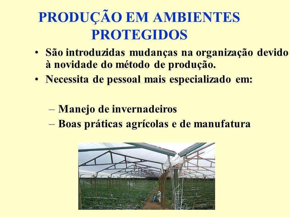 PRODUÇÃO EM AMBIENTES PROTEGIDOS São introduzidas mudanças na organização devido à novidade do método de produção.