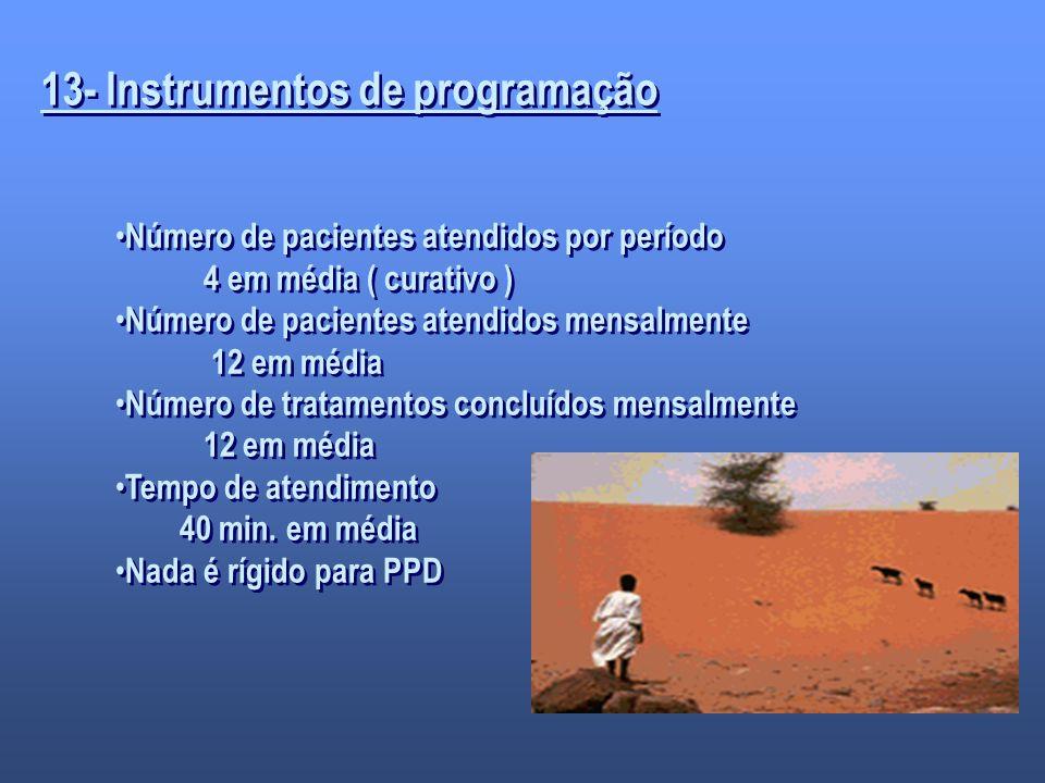 13- Instrumentos de programação Número de pacientes atendidos por período 4 em média ( curativo ) Número de pacientes atendidos mensalmente 12 em médi
