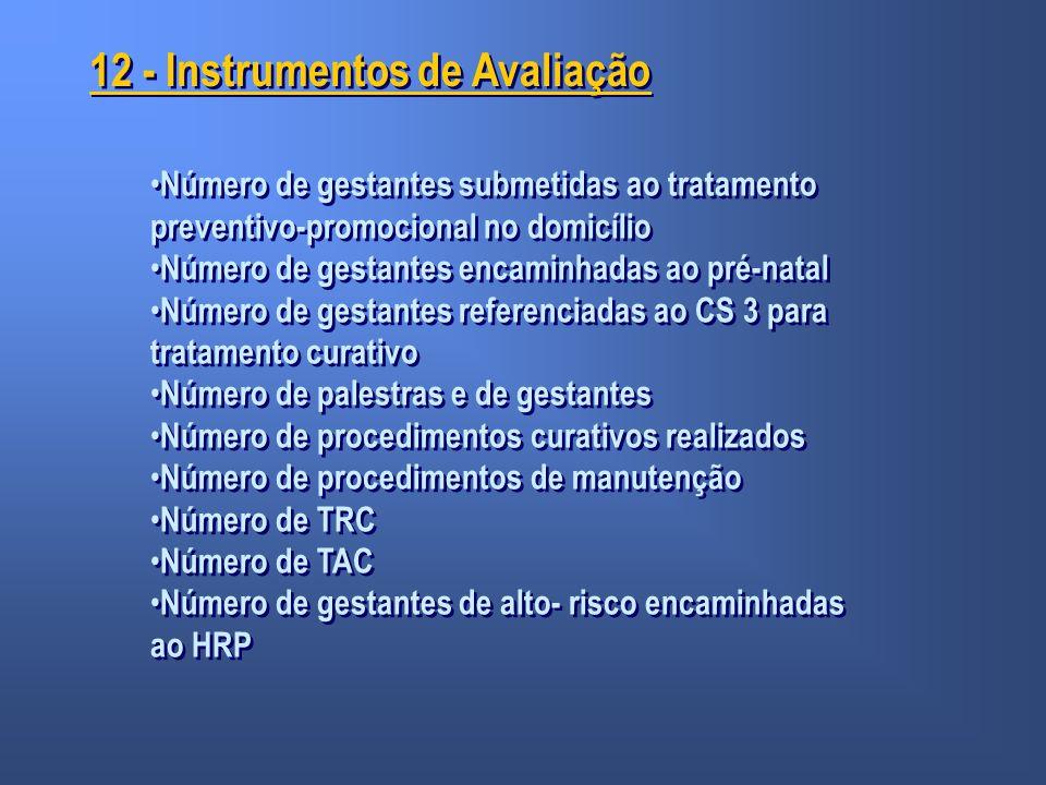 12 - Instrumentos de Avaliação Número de gestantes submetidas ao tratamento preventivo-promocional no domicílio Número de gestantes encaminhadas ao pr