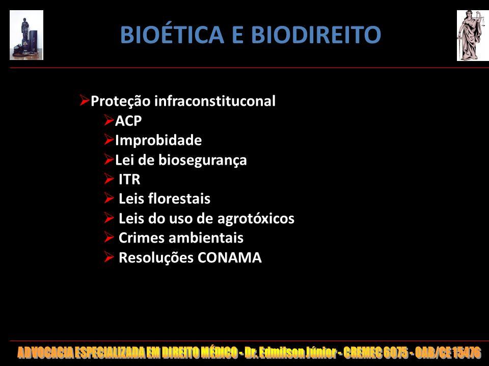 115 Proteção infraconstituconal ACP Improbidade Lei de biosegurança ITR Leis florestais Leis do uso de agrotóxicos Crimes ambientais Resoluções CONAMA