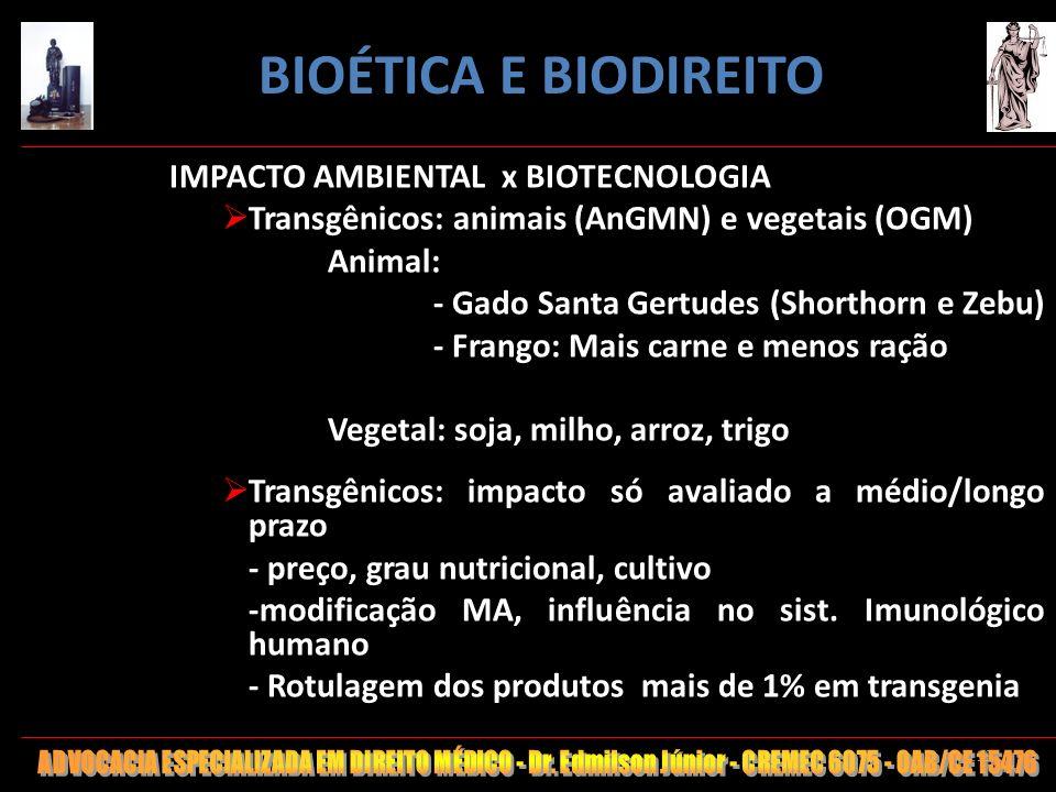 119 IMPACTO AMBIENTAL x BIOTECNOLOGIA Transgênicos: animais (AnGMN) e vegetais (OGM) Animal: - Gado Santa Gertudes (Shorthorn e Zebu) - Frango: Mais c