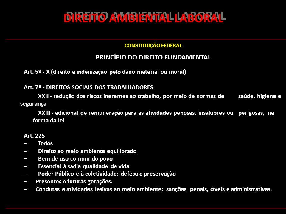 151 DIREITO AMBIENTAL LABORAL CONSTITUIÇÃO FEDERAL PRINCÍPIO DO DIREITO FUNDAMENTAL Art. 5º - X (direito a indenização pelo dano material ou moral) Ar