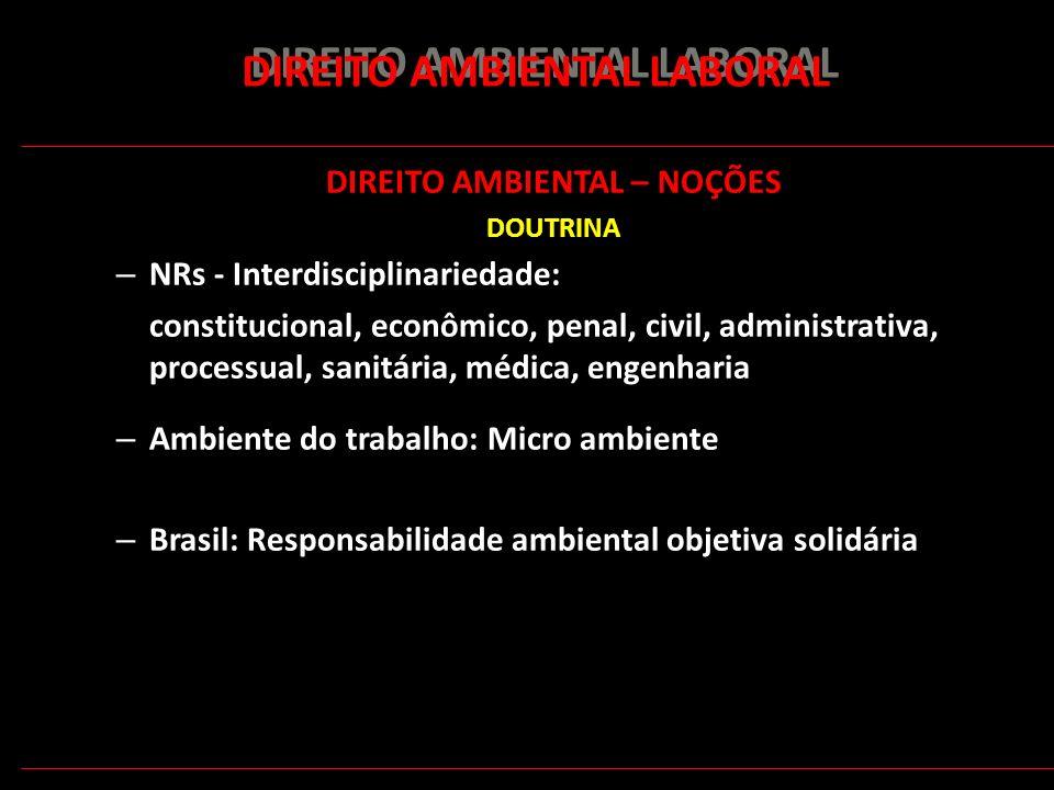 152 DIREITO AMBIENTAL LABORAL DIREITO AMBIENTAL – NOÇÕES DOUTRINA – NRs - Interdisciplinariedade: constitucional, econômico, penal, civil, administrat