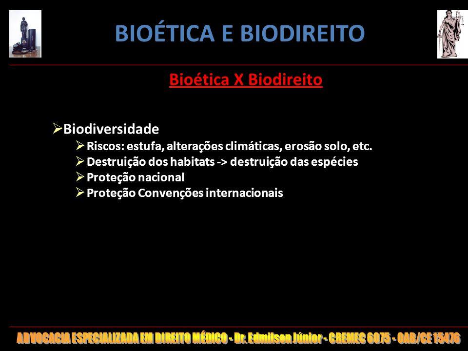 22 Bioética X Biodireito Biodiversidade Riscos: estufa, alterações climáticas, erosão solo, etc. Destruição dos habitats -> destruição das espécies Pr