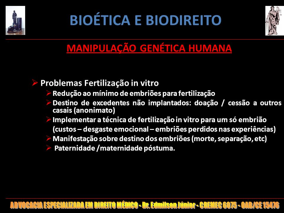 61 MANIPULAÇÃO GENÉTICA HUMANA Problemas Fertilização in vitro Redução ao mínimo de embriões para fertilização Destino de excedentes não implantados: