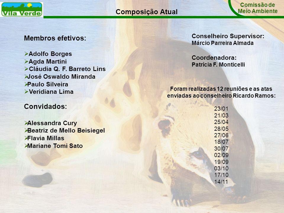 Comissão de Meio Ambiente Composição Atual Membros efetivos: Adolfo Borges Agda Martini Cláudia Q. F. Barreto Lins José Oswaldo Miranda Paulo Silveira