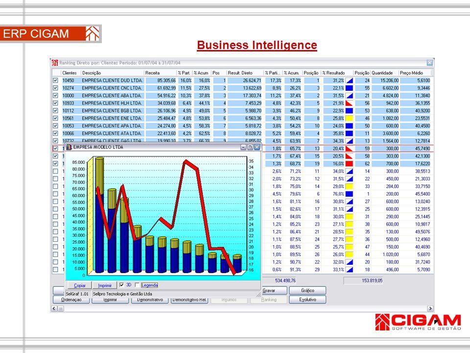 ERP CIGAM Business Intelligence