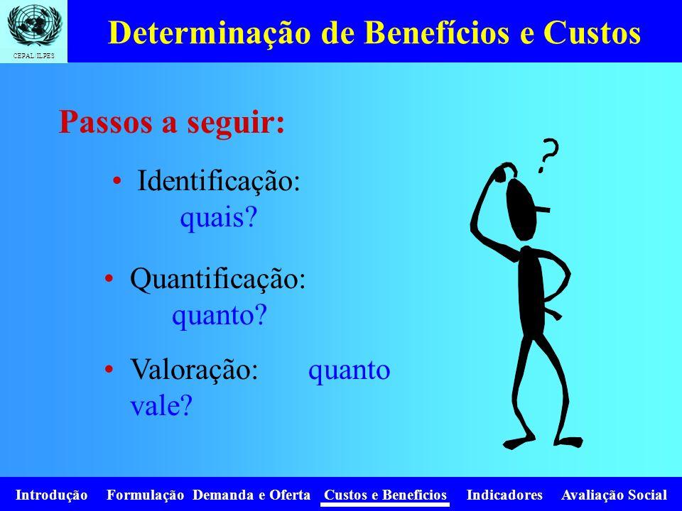 CEPAL/ILPES Introdução Formulação Demanda e Oferta Custos e Beneficios Indicadores Avaliação Social Determinação de Benefícios e Custos Identificação: quais.