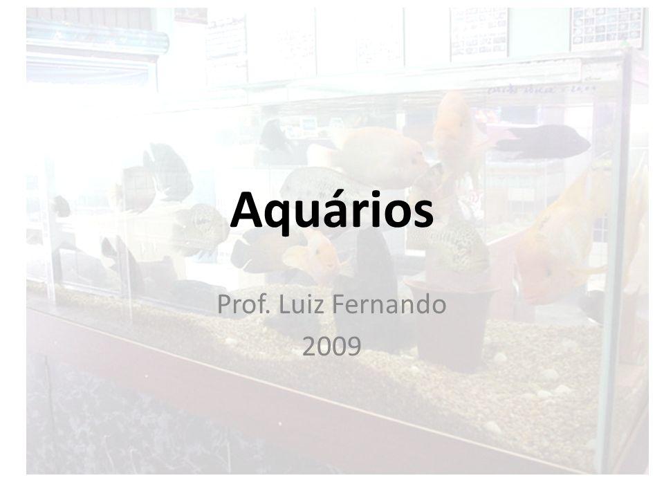 Aquários Prof. Luiz Fernando 2009