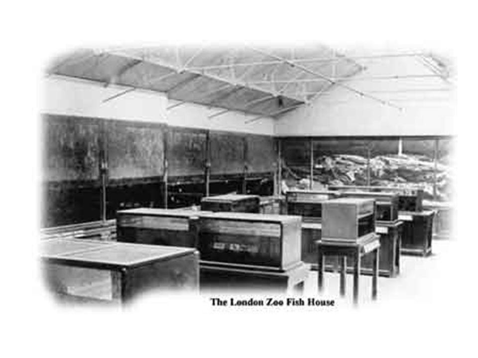 Aquário do Palácio de Cristal - o Aquário da Rainha, concebido por William Alford Lloyd, chamado de o primeiro aquarista .