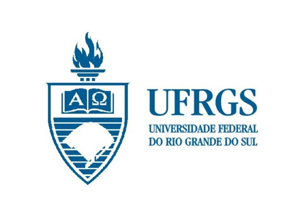 RELATÓRIO DE AVALIAÇÃO INSTITUCIONAL DA UFRGS SINAES/PAIPUFRGS 2004-2005