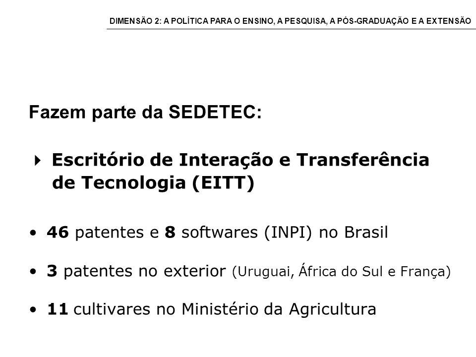 Fazem parte da SEDETEC: Escritório de Interação e Transferência de Tecnologia (EITT) 46 patentes e 8 softwares (INPI) no Brasil 3 patentes no exterior (Uruguai, África do Sul e França) 11 cultivares no Ministério da Agricultura DIMENSÃO 2: A POLÍTICA PARA O ENSINO, A PESQUISA, A PÓS-GRADUAÇÃO E A EXTENSÃO