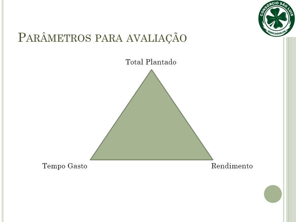 P ARÂMETROS PARA AVALIAÇÃO Total Plantado Tempo GastoRendimento