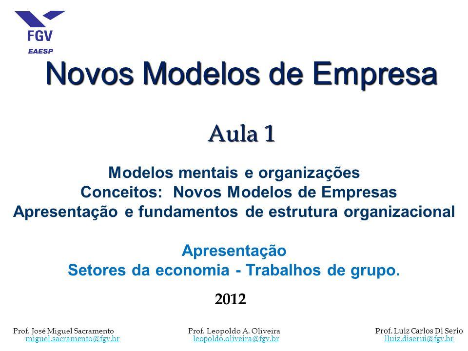 Novos Modelos de Empresa Aula 1 Modelos mentais e organizações Conceitos: Novos Modelos de Empresas Apresentação e fundamentos de estrutura organizaci