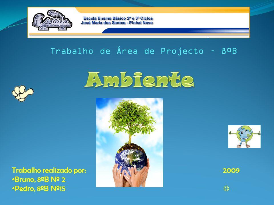 Trabalho de Área de Projecto – 8ºB Trabalho realizado por: 2009 Bruno, 8ºB Nº 2 Pedro, 8ºB Nº15