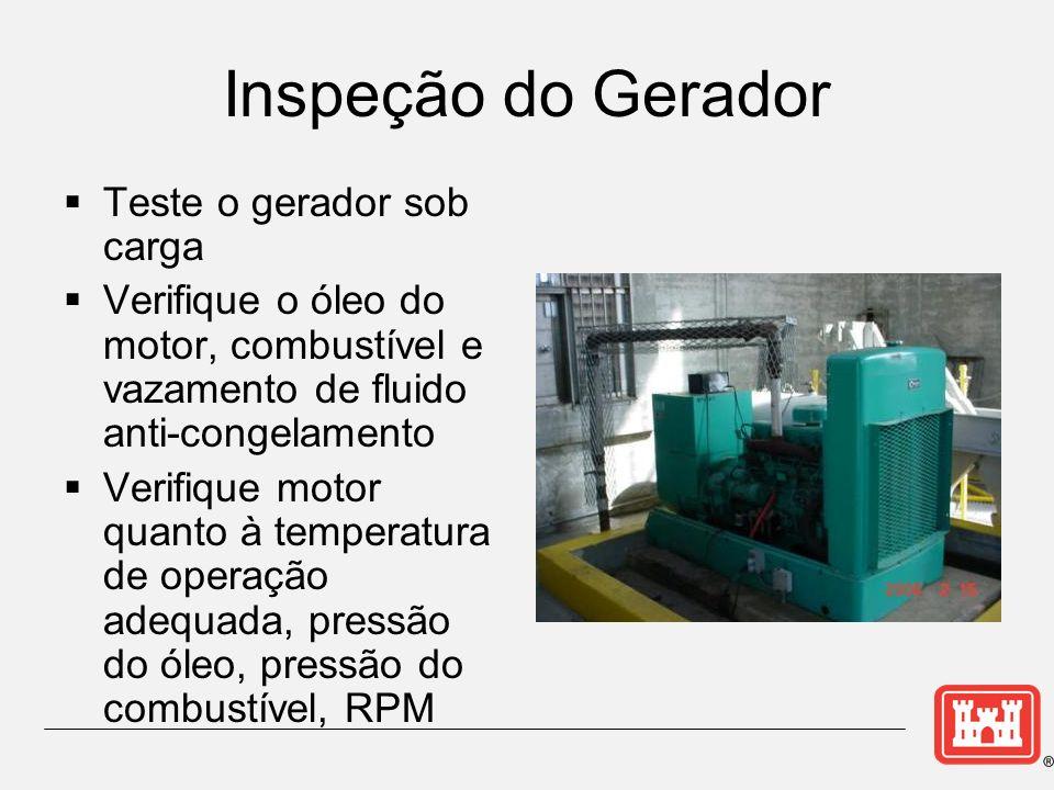 Inspeção do Gerador Teste o gerador sob carga Verifique o óleo do motor, combustível e vazamento de fluido anti-congelamento Verifique motor quanto à temperatura de operação adequada, pressão do óleo, pressão do combustível, RPM