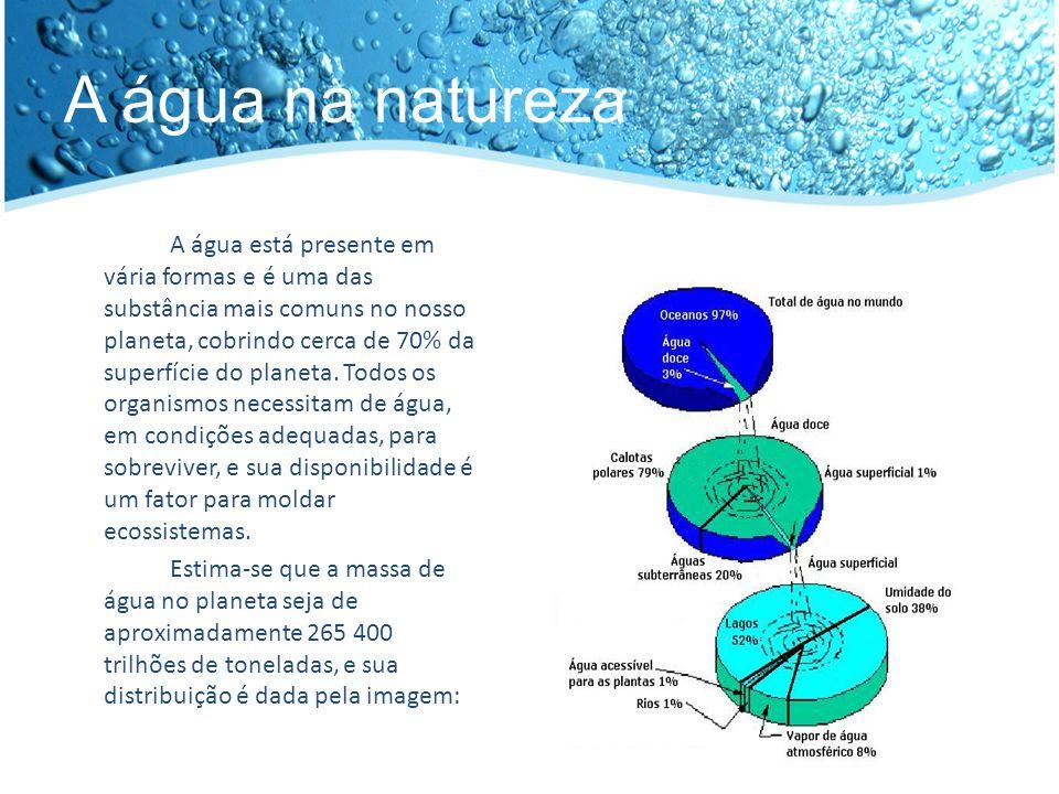 A água na natureza Apesar da abundância de água, é pequena a quantidade aproveitada pelo homem, apenas 0.5% dos recursos hídricos são explorados.