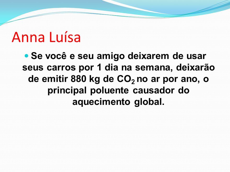 Anna Luísa Se você e seu amigo deixarem de usar seus carros por 1 dia na semana, deixarão de emitir 880 kg de CO 2 no ar por ano, o principal poluente
