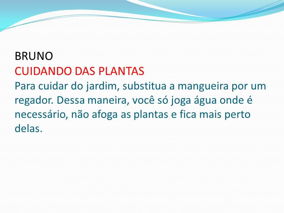 BRUNO CUIDANDO DAS PLANTAS Para cuidar do jardim, substitua a mangueira por um regador. Dessa maneira, você só joga água onde é necessário, não afoga