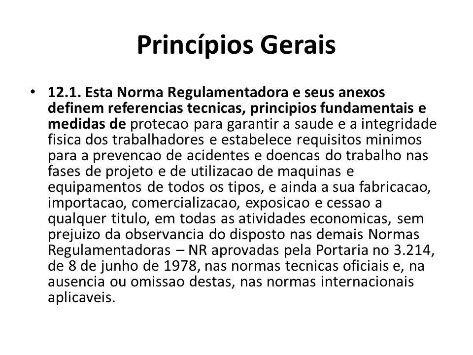 Princípios Gerais 12.1. Esta Norma Regulamentadora e seus anexos definem referencias tecnicas, principios fundamentais e medidas de protecao para gara