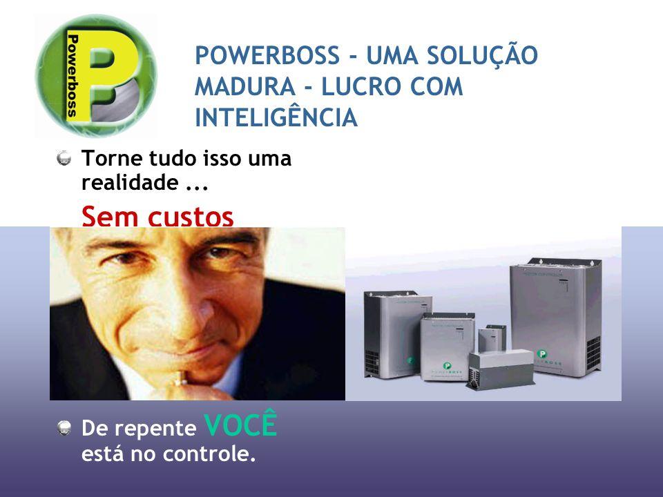 POWERBOSS - UMA SOLUÇÃO MADURA - LUCRO COM INTELIGÊNCIA Torne tudo isso uma realidade...