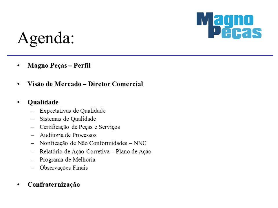 Magno Peças – PerfilMagno Peças – Perfil Visão de Mercado – Diretor ComercialVisão de Mercado – Diretor Comercial QualidadeQualidade –Expectativas de