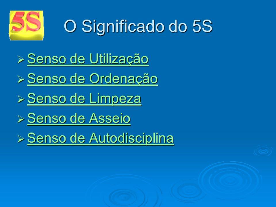 O Significado do 5S Senso de Utilização Senso de Utilização Senso de Utilização Senso de Utilização Senso de Ordenação Senso de Ordenação Senso de Ord