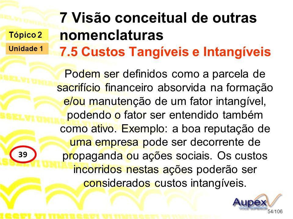 7 Visão conceitual de outras nomenclaturas 7.5 Custos Tangíveis e Intangíveis Podem ser definidos como a parcela de sacrifício financeiro absorvida na