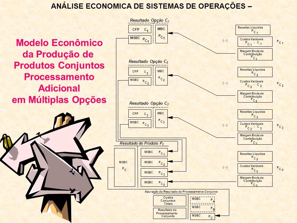 Modelo Econômico da Produção de Produtos Conjuntos Processamento Adicional em Múltiplas Opções ANÁLISE ECONOMICA DE SISTEMAS DE OPERAÇÕES –