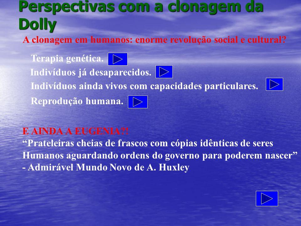 Perspectivas com a clonagem da Dolly A clonagem em humanos: enorme revolução social e cultural? Terapia genética. Indivíduos já desaparecidos. Indivíd