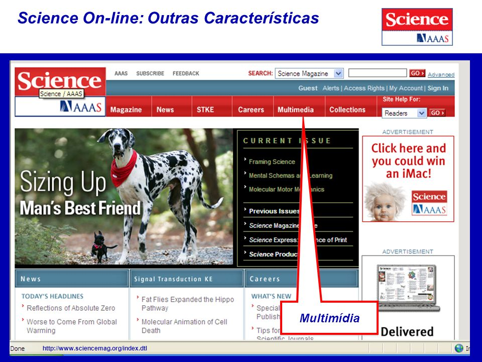 Science On-line: Outras Características http://www.sciencemag.org/index.dtl Multimídia
