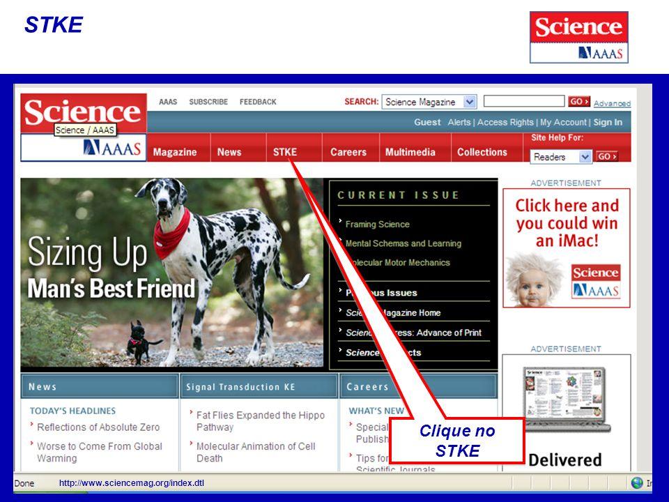 STKE http://www.sciencemag.org/index.dtl Clique no STKE