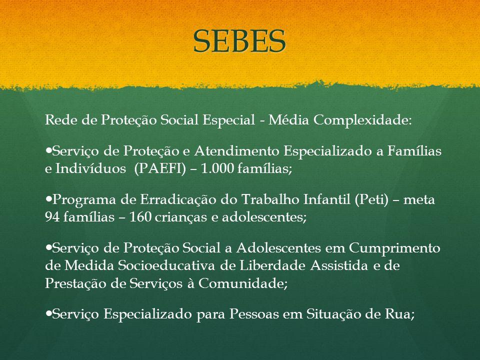SEBES Rede de Proteção Social Especial - Média Complexidade: Serviço de Proteção e Atendimento Especializado a Famílias e Indivíduos (PAEFI) – 1.000 f