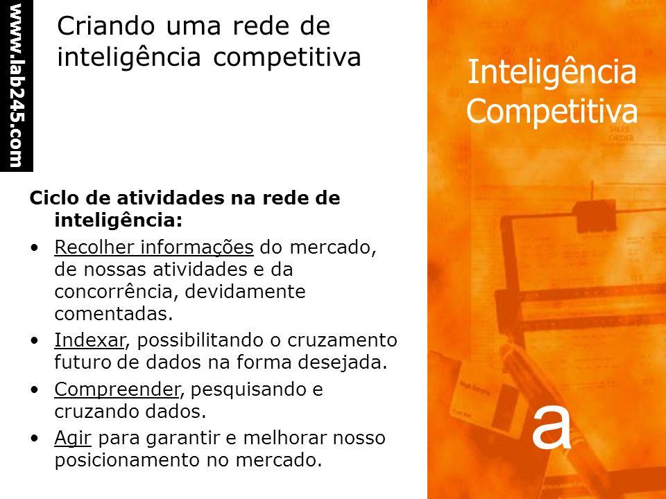 a www.lab245.com Inteligência Competitiva Ciclo de atividades na rede de inteligência: Recolher informações do mercado, de nossas atividades e da concorrência, devidamente comentadas.