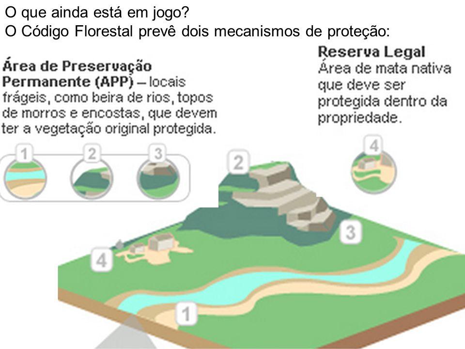O que ainda está em jogo? O Código Florestal prevê dois mecanismos de proteção: