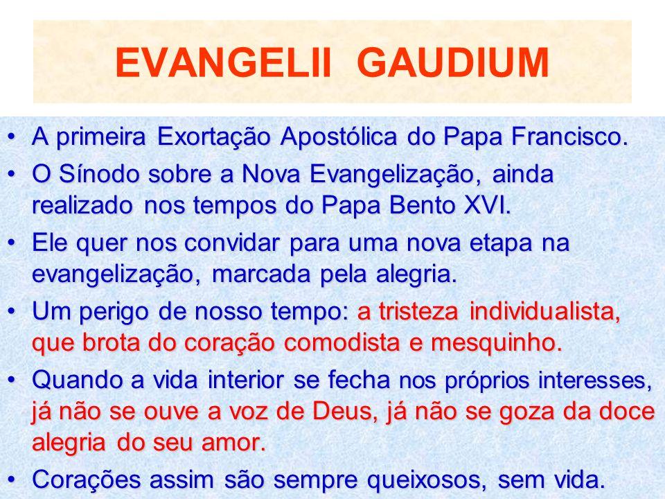 EVANGELII GAUDIUM A primeira Exortação Apostólica do Papa Francisco.A primeira Exortação Apostólica do Papa Francisco. O Sínodo sobre a Nova Evangeliz